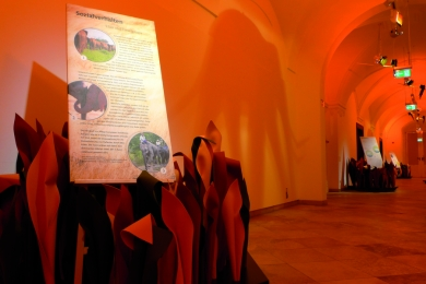 Elefantenausstellung im Residenzschloss Oettingen - © Copyright Die Werft